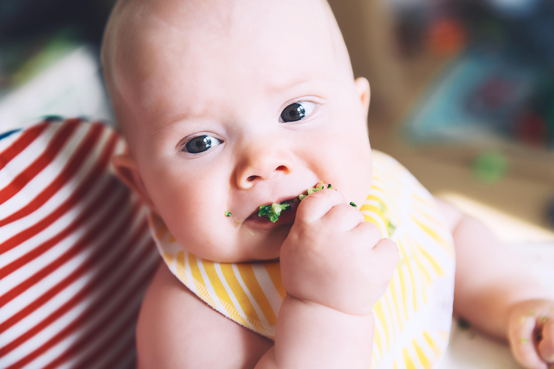 Baby Led Weaning (BLW), el método que permite a los niños comer con las manos
